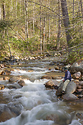 A hiker enjoys the Mad River which is on the side of Greeley Ponds Trail in the White Mountains, New Hampshire. During the logging era the Mad River was used for log drives.