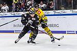 Markus Lillich (Nuernberg) und Alex Trivellato (Krefeld) im Spiel der DEL, Nuernberg Ice Tigers (dunkel) - Krefeld Pinguine (hell).<br /> <br /> Foto © PIX-Sportfotos *** Foto ist honorarpflichtig! *** Auf Anfrage in hoeherer Qualitaet/Aufloesung. Belegexemplar erbeten. Veroeffentlichung ausschliesslich fuer journalistisch-publizistische Zwecke. For editorial use only.