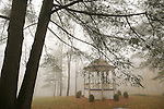 Village Green gazebo on foggy November morning.