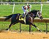 Running Mate winning at Delaware Park on 10/5/16