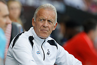 Alan Curtis, assistant coach for Swansea sits on the bench during the Sky Bet Championship match between Swansea City and Rotherham United at the Liberty Stadium, Swansea, Wales, UK. Friday 19 April 2019