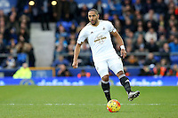 Ashley Williams during the Barclays Premier League match between Everton and Swansea City played at Goodison Park, Liverpool