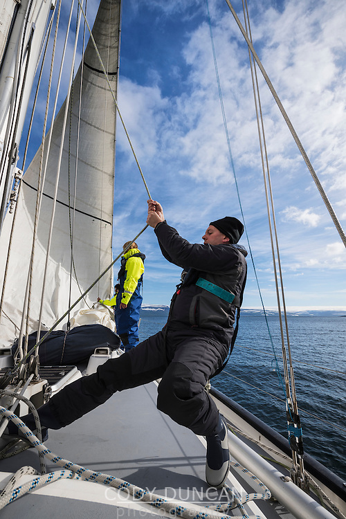 Manually hoisting the headsail while sailing in Westfjords of Iceland