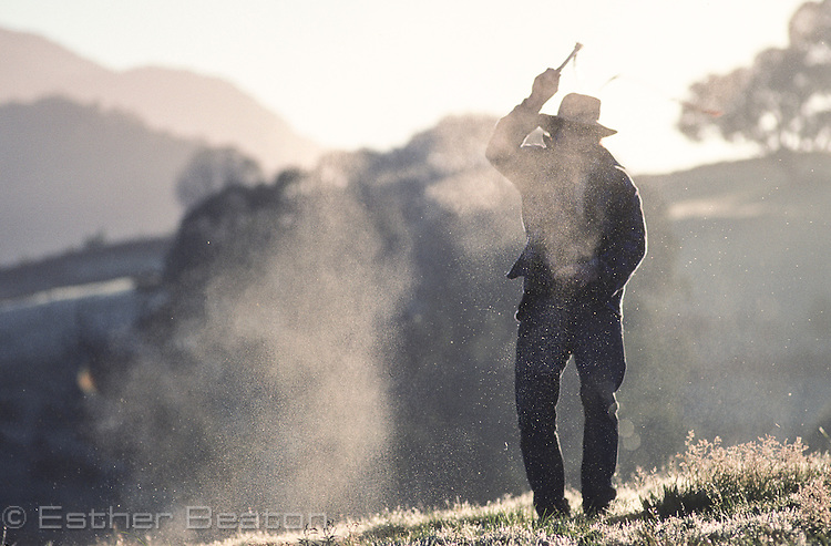 Stockman cracking whip. Mt Buller area, Snowy Mountains, Victoria.