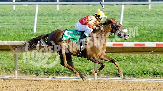 Wycked winning at Delaware Park on 9/22/12