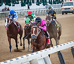 October 26, 2019: Maximum Security, ridden by Luis Saez, wins the 2019 running of the G3 Bold Ruler at Belmont Park in Elmont, NY. Sophie Shore/ESW/CSM