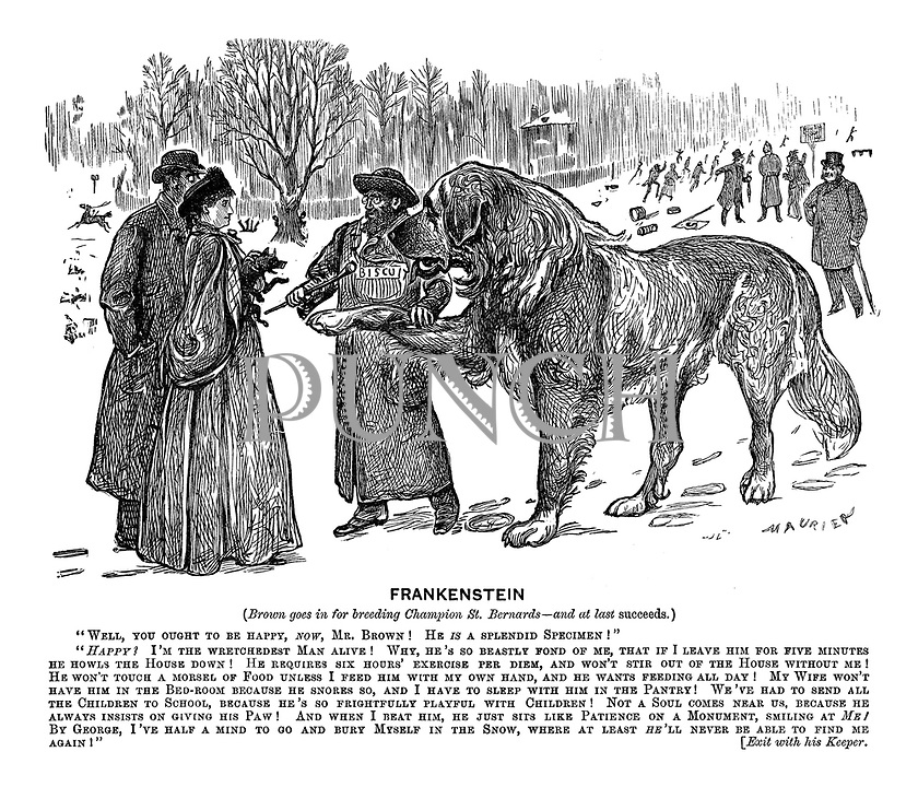 """Frankenstein (Brown goes in for breeding champion St Bernards - and at last succeeds.) """"Well, you ought to be happy, now, Mr Brown! He is a splendid specimen!"""" """"Happy! I'm the wretchedest man alive! Why, he's so beastly fond of me, that if I leave him for five minutes be howls the house down! He require six hours' exercise per diem, and won't stir out of the house without me! He won't touch a morsel of food unless I feed him with my own hand, and he wants feeding all day! My wife won't have him in the bedroom because he snores so, and I have to sleep with him in the pantry! We've had to send all the children to school, because he's so frightfully playful with the children! Not a soul comes near us, because he always insists on giving his paw! And when I beat him, he just sits like patience on a monument, smiling at me! By George, I've half a mind to go and bury myself in the snow, where at least he'll never be able to find me again!"""" [Exit with his keeper."""