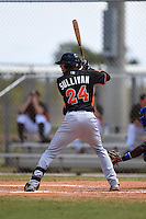 Miami Marlins Zach Sullivan (24) during a minor league spring training game against the New York Mets on March 30, 2015 at the Roger Dean Complex in Jupiter, Florida.  (Mike Janes/Four Seam Images)