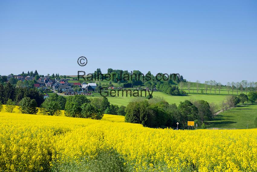 Germany, Free State of Thuringia, near Allersdorf (Herschdorf): yellow rape fields | Deutschland, Freistaat Thueringen, bei Allersdorf (Herschdorf): Rapsfelder