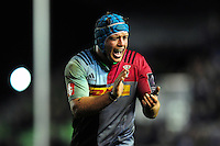 Joe Gray of Harlequins shouts out encouragement. European Rugby Challenge Cup semi final, between Harlequins and Grenoble on April 22, 2016 at the Twickenham Stoop in London, England. Photo by: Patrick Khachfe / JMP