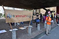 SAO PAULO, SP, 25 DE MAIO DE 2013 - PROTESTO MONSANTO - Manifestantes protestam contra a multinacional Monsanto pelo uso de agrotóxicos e possíveis substâncias cancerígenas administradas nos produtos, no vão livre do Masp, Avenida Paulista, na tarde deste sábado, 25.  (FOTO: ALEXANDRE MOREIRA / BRAZIL PHOTO PRESS)