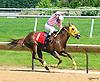 O. T. Prayer winning at Delaware Park on 6/1/16