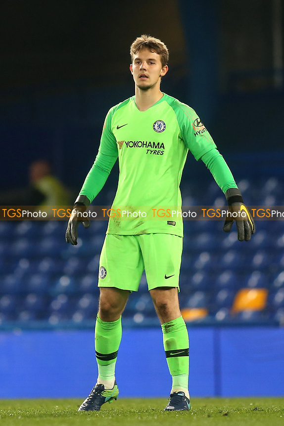 Chelsea goalkeeper, Karlo Ziger during Chelsea Under-23 vs Arsenal Under-23, Premier League 2 Football at Stamford Bridge on 15th April 2019
