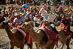 Caesar Boswell, left, of Salt Lake City, and Kristy Bond, center, of Mt. Shasta, Calif., battle for a win at the 51st annual International Camel Races in Virginia City, Nevada  September 12, 2010. .CREDIT: Max Whittaker for The Wall Street Journal.CAMEL