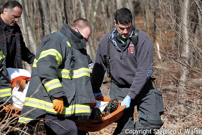 Injured hiker Webster Conservation Land rear of 300 Hammond Pond Pakrway in Newton.