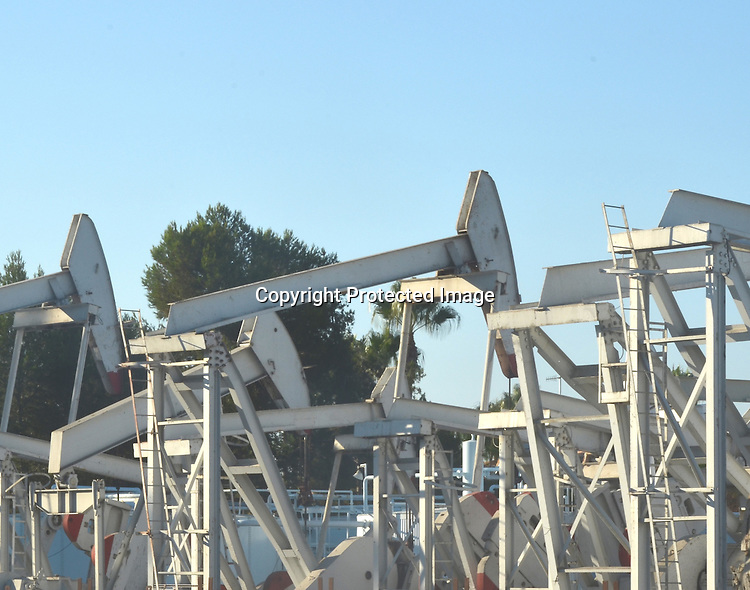 Stock photo of Oil Pumping Machines