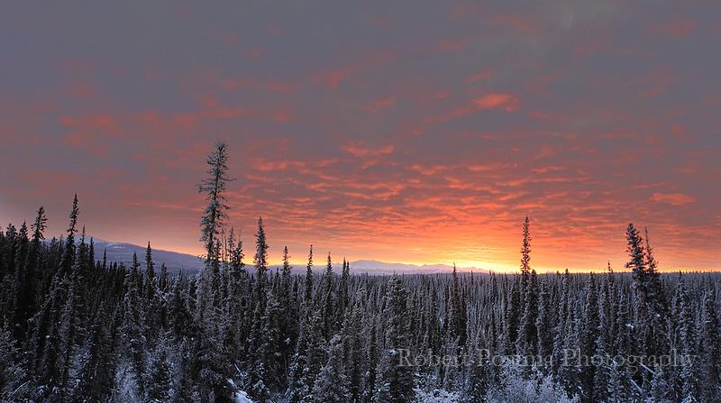 Sunrise in the Yukon.