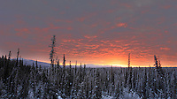 Sunrise in the Yukon.