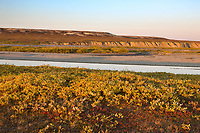 Sagavanirktok river and the Franklin Bluffs on the Arctic Coastal Plains, Arctic, Alaska.