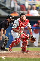 Auburn Doubledays catcher Raudy Read (29) retrieves a blocked pitch in the dirt during a game against the Batavia Muckdogs on June 16, 2014 at Dwyer Stadium in Batavia, New York.  Batavia defeated Auburn 4-3.  (Mike Janes/Four Seam Images)