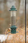 Bird Feeder female cardinal.