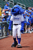 """One of the Omaha Storm Chasers mascots """"Casey"""" in action prior to the game against the Oklahoma City Dodgers at Werner Park on June 24, 2018 in Omaha, Nebraska. Omaha won 8-0.  (Dennis Hubbard/Four Seam Images)"""