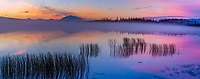 Panorama of colorful morning sunrise over Willow lake and the Wrangell Mountains, Wrangell St. Elias National Park, Alaska.