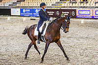 Cooper Oborn rides Aphrodite during the Norwood Dressage Grand Prix. Final-1st. 2019 Equitana Auckland. ASB Showgrounds. Auckland. New Zealand. Thursday 21 November. Copyright Photo: Libby Law Photography