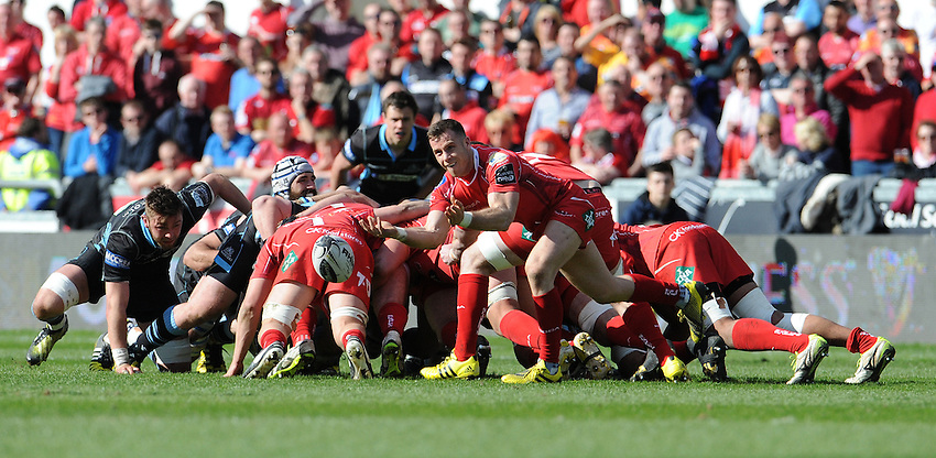 Scarlets' Steve Shingler whips the ball out <br /> <br /> Photographer Ian Cook/CameraSport<br /> <br /> Rugby Union - Guinness PRO12 Round 20 - Scarlets v Glasgow Warriors - Saturday 16th April 2016 - Parc y Scarlets - Llanelli <br /> <br /> &copy; CameraSport - 43 Linden Ave. Countesthorpe. Leicester. England. LE8 5PG - Tel: +44 (0) 116 277 4147 - admin@camerasport.com - www.camerasport.com