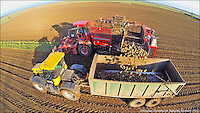 Photo by &copy; Stephen Daniels/Air Imaging 27/01/2015 <br />