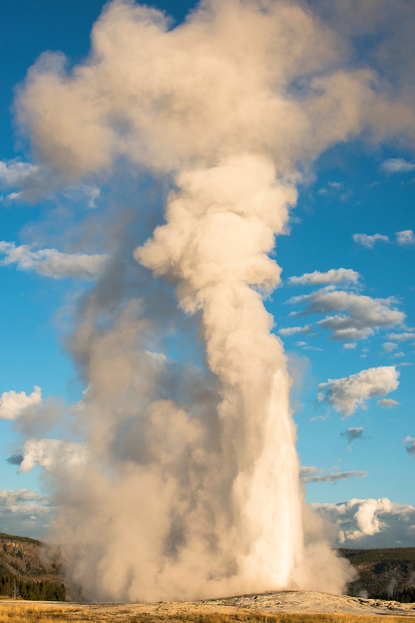 Old Faithful erupts at dawn in Yellowstone National Park.