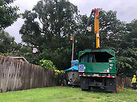 Crews clearing vegetation after Hurricane Hurricane Dorian in Vero Beach, Fla. on September 4, 2019