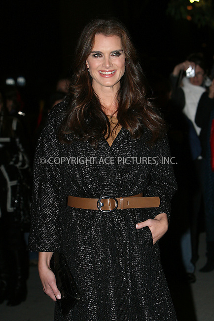 WWW.ACEPIXS.COM . . . . .  ....November 17 2009, New York City....Actress Brooke Shields arriving at MoMA's Second Annual Film Benefit, Honoring Tim Burton at the MOMA on November 17, 2009 in New York.....Please byline: NANCY RIVERA- ACE PICTURES.... *** ***..Ace Pictures, Inc:  ..tel: (212) 243 8787 or (646) 769 0430..e-mail: info@acepixs.com..web: http://www.acepixs.com