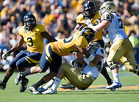 September 4, 2010:  Mychal Kenricks of California sacks Kevin Prince of UCLA for a loss during a game at Memorial Stadium in Berkeley, California.   California defeated UCLA 35-7