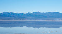 Saline Range reflected in Salt Lake. Saline Valley, Death Valley National Park, California