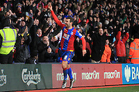 Crystal Palace vs Newcastle United 28-11-15