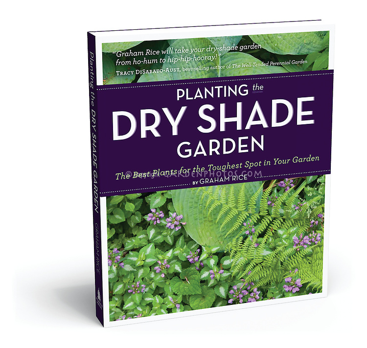 Book Cover Planting the Dry Shade Garden by Graham Rice publisher Timber Press
