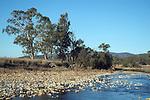 Stoney Creek near Bingara NSW