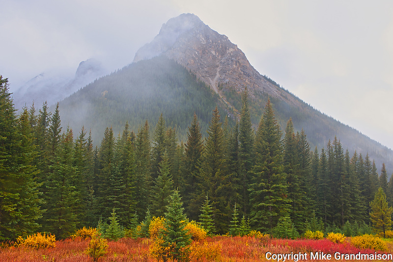 Autumn colors  in the Canadian Rocky Mountains at Highwood Pass<br />
