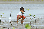 In this 2007 photo from the coastal village of Moawo, 5-year old Jefrin Zendrato plants mangrove seedlings, part of a project on the Indonesian island of Nias to improve habitat for sea life and provide some protection from future tsunamis. The project is sponsored by the Yakkum Emergency Unit (YEU), a member of the ACT Alliance.<br /> <br /> Parental consent obtained.