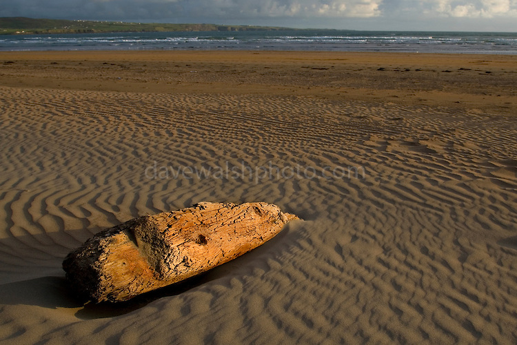 Driftwood on Lahinch Beach, Clare, Ireland.