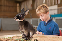 A happy bunny at Ferry Farm, Thurgarton, Nottinghamshire