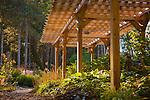 20150929 Bogren Garden