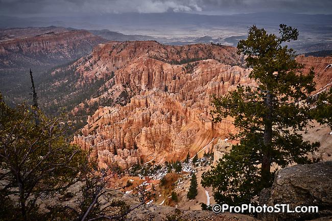 Bryce Canyon National Park in Utah, USA