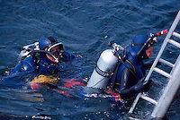 Scuba Divers wearing Oxygen Tanks / Diving Cylinders diving in Pacific Ocean, along the West Coast near Vancouver, BC, British Columbia, Canada