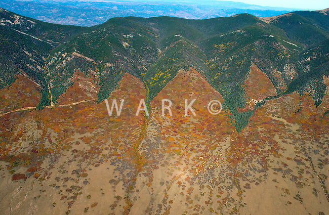 Fall colors north of Crestone, Colorado. Oct 5, 2013