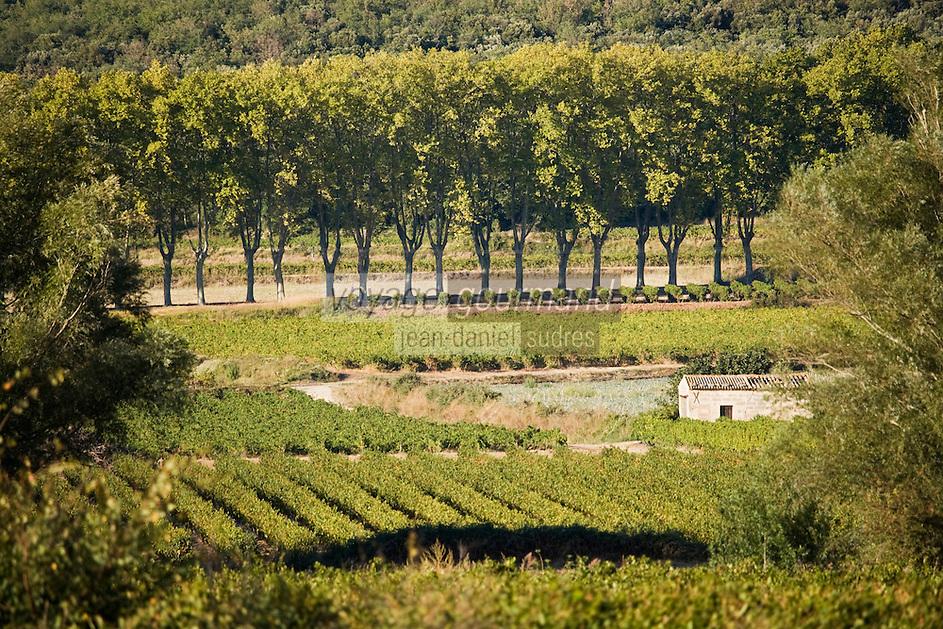 Europe/France/Languedoc-Roussillon/30/Gard/ Saint-Siffret: Paysage  viticole aux alentours de Saint-siffret