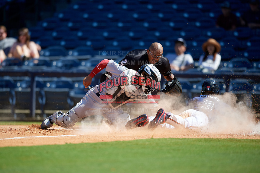 Jacksonville Jumbo Shrimp catcher Rodrigo Vigil (1) attempts to tag Drew Waters (3) scoring the game winning run on a squeeze play with umpire Jose Navas looking on to make the call during a Southern League game against the Mississippi Braves on May 5, 2019 at Trustmark Park in Pearl, Mississippi.  Mississippi defeated Jacksonville 1-0 in ten innings.  (Mike Janes/Four Seam Images)