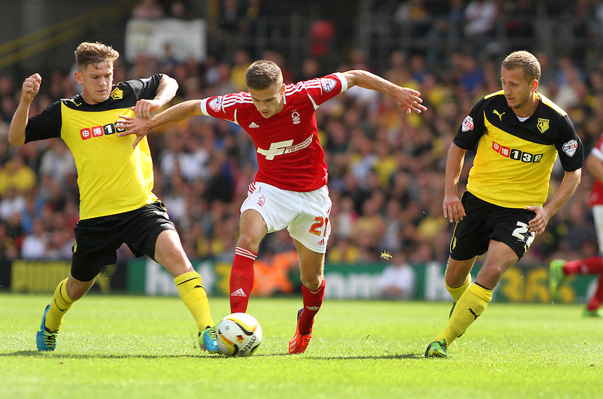 Nottingham Forest's Jamie Paterson holds off Watford's Sean Murray.<br /> <br /> Photo by James Marsh/CameraSport<br /> <br /> Football - The Football League Sky Bet Championship - Watford v Nottingham Forest - Sunday 25th August 2013 - Vicarage Road - Watford<br /> <br /> &copy; CameraSport - 43 Linden Ave. Countesthorpe. Leicester. England. LE8 5PG - Tel: +44 (0) 116 277 4147 - admin@camerasport.com - www.camerasport.com