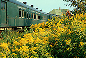 Marquette and Huron Mountain Railroad cars at the Marquette depot with goldenrod in the foreground. Circa 1970's